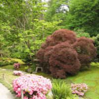 Ландшафтный дизайн загородного сада своими руками