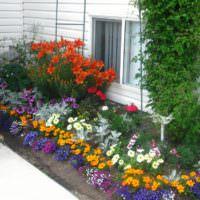Клумба с цветами около крыльца дачного домика