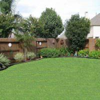 Зеленый газон и деревянный забор