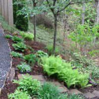 Живописный склон садового участка