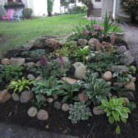 Клумба из камней перед садовой дорожкой