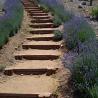 Простая лестница с деревянными ступенями