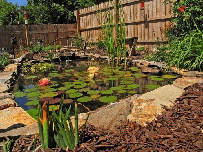 Искусственный водоем своими руками на садовом участке