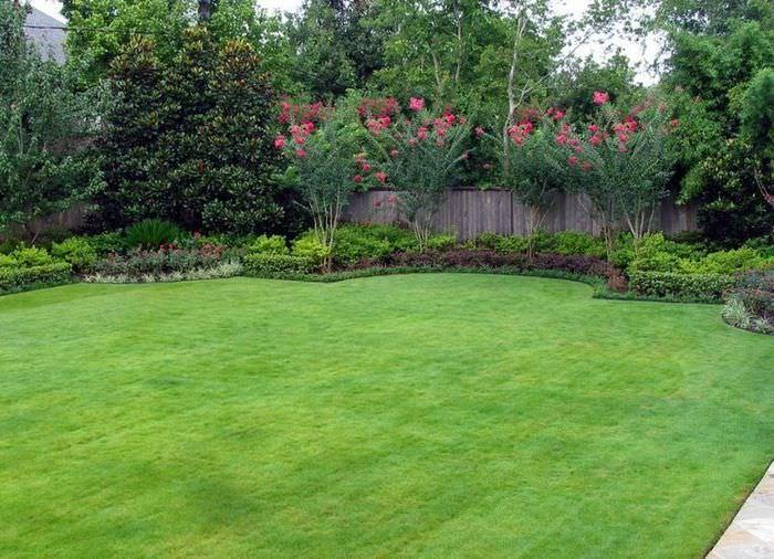 Зеленая лужайка в саду загородного дома