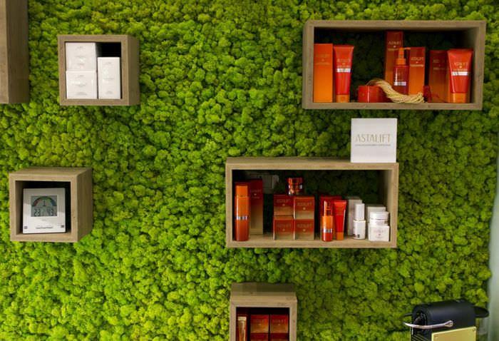 Книжные полки на зеленой стене из мха