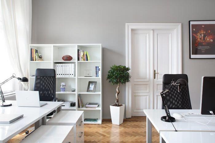 Двойные распашные двери в рабочем кабинете