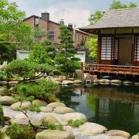 Японская беседка на берегу искусственного водоема