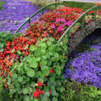 Цветочная композиция в виде мостика через ручей