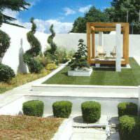 Белый цвет в ландшафте сада