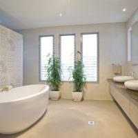Живые растения в интерьере ванной