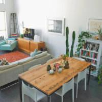 Комнатные растения в современном интерьере