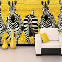 Фотообои с полосатыми зебрами на стене гостиной