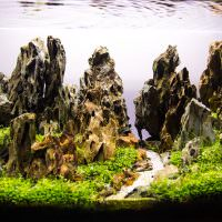 Подводные скалы на дне аквариума