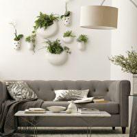 Живые растения в качестве декора стен