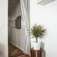 Комнатное растение на деревянной подставке