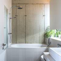 Комнатные растения в интерьере ванной