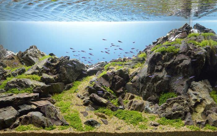 Реалистичное декорирование аквариума природным камнем