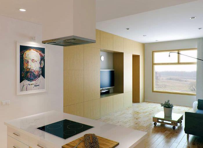Дизайн совмещенной комнаты в однушке