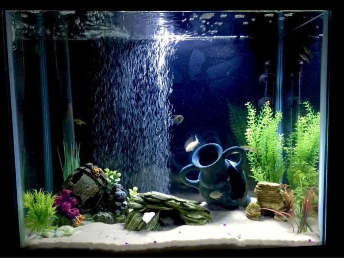 Глиняный кувшин на дне аквариума
