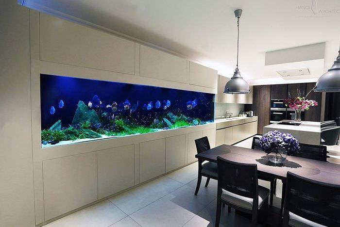 Длинный аквариум в интерьере кухни-гостиной