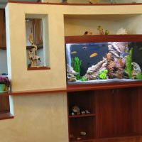 Легкая перегородка с плоским аквариумом
