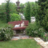 Две кошки на деревянной скамейке