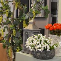 Комнатные цветы в керамических вазах