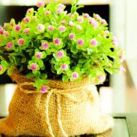 Полевые цветы в интерьере дома