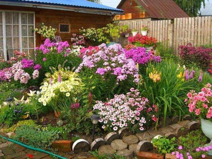 Красивый цветник в палисаднике дачного участка