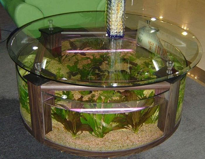 Стеклянный журнальный стол в форме аквариума