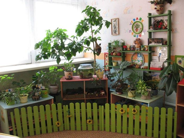 Пример оформления живого уголка в детском саду