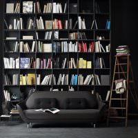 Коллекция книг на черных полках