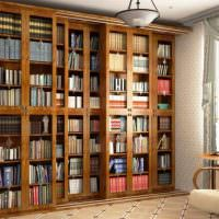 Книжные шкафы с дверцами вдоль стены гостиной