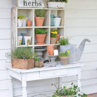 Стеллаж с домашними растениями в интерьере квартиры