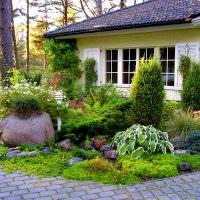 Красивая композиция с кустарниковыми растениями перед дачным домиком