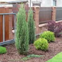 Деревянный забор на бетонных столбах
