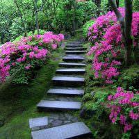 Садовая лестница из природного камня