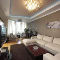 Фото интерьера длинной гостиной