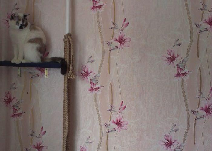 Когтеточка с полочкой для домашней кошки на трубе отопления