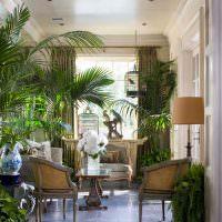 Тропические растения в современном интерьере