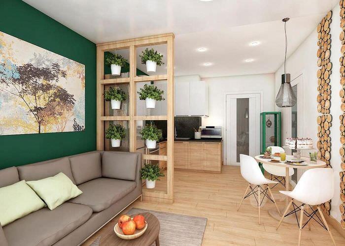Перегородка с живыми растениями в кухне-гостиной