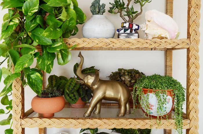 Полочки для домашних цветов и декоративных штучек
