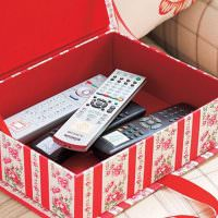 Коробка для хранения телевизионных пультов