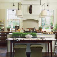 Живые растения в интерьере кухни-гостиной
