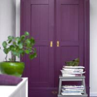 Темно-фиолетовый шкаф из натурального дерева