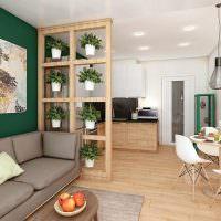 Перегородка с комнатными растениями в роли разделителя пространства