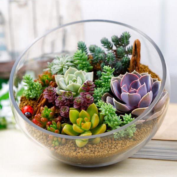 Такой мини-сад станет украшением вашей кухни