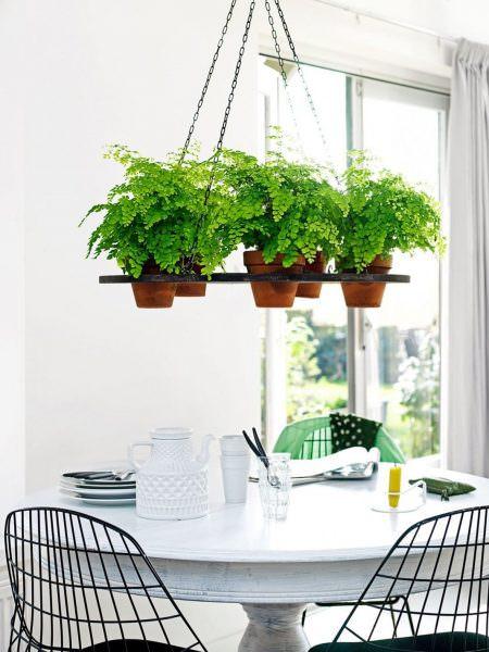Подвесные цветы очень гармонично вписываются в кухонный интерьер и занимают минимум пространства